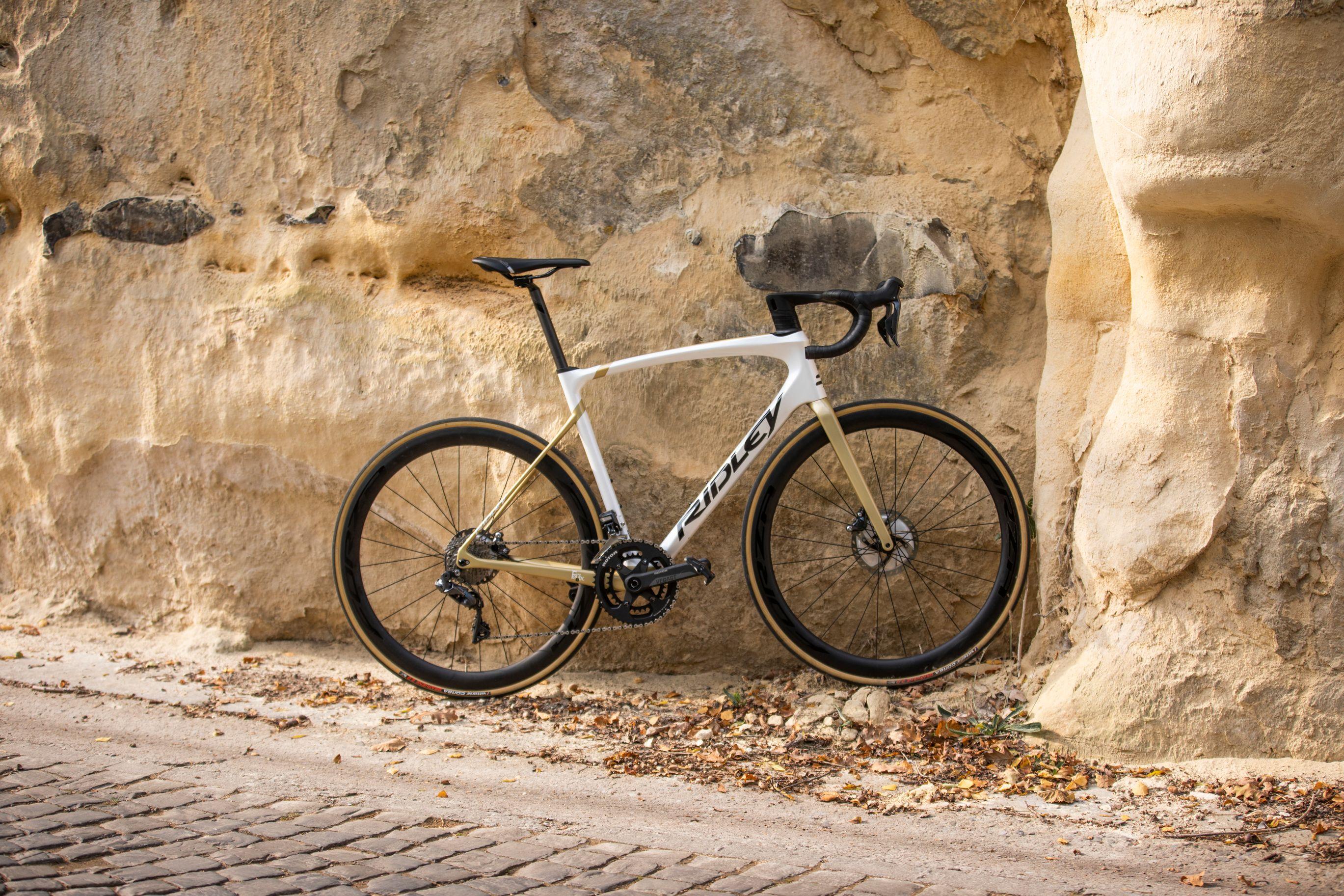 Ridley Road Bike Rental